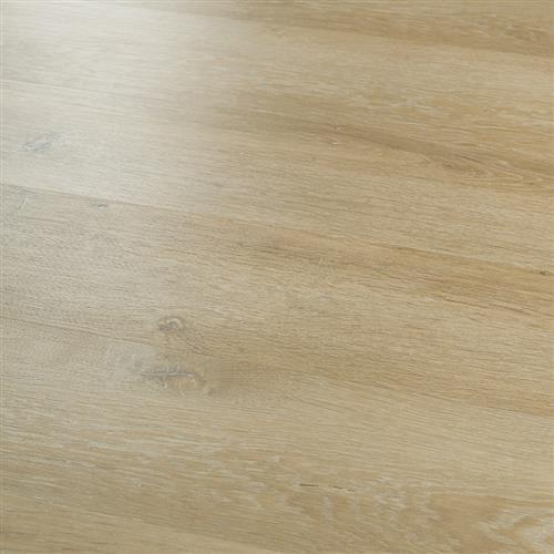20Mil Collection Piedmont Oak