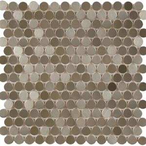 MetalTile PerthPennyRounds A9503 StainlessStippled