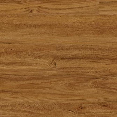 Coretec One Adelaide Walnut 50LVP805