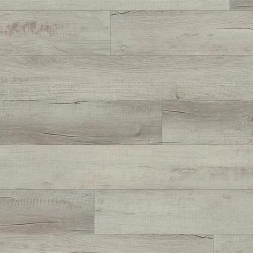 Coretec Pro Plus Chesapeake Oak 1001