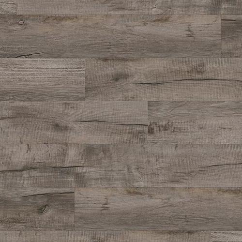 Coretec Pro Plus Galveston Oak 1002