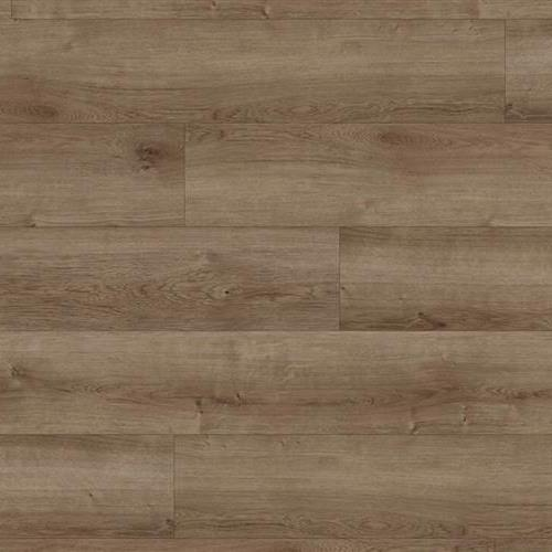 Coretec Pro Plus Alamitos Pine 1003