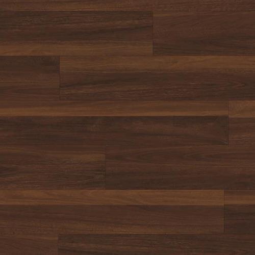 Coretec Pro Plus Biscayne Oak 1008