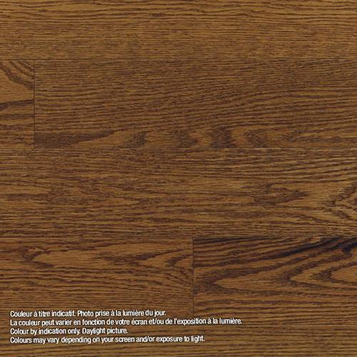 Model Classic - Engineered Ancestral - Red Oak