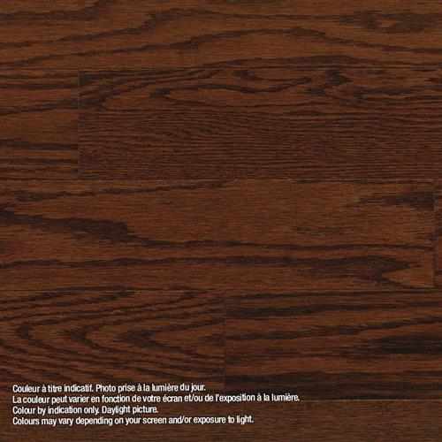 Model Classic - Engineered Banff - Red Oak