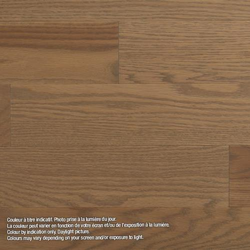 Model Classic - Solid Marula - Red Oak