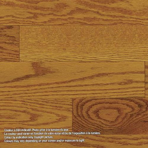 Model Classic - Solid Renaissance - Red Oak