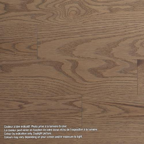 Model Classic - Solid Sandbanks - Red Oak