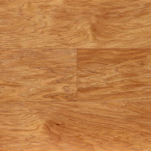 Nuvelle Thomasville Collection Hickory Amber Laminate