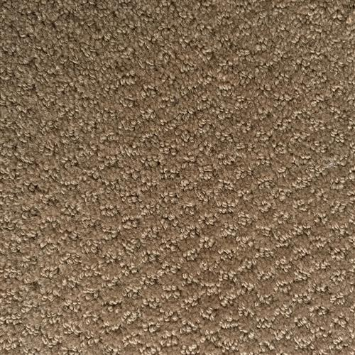 In-Stock Carpet By Beaulieu Arctic Fox