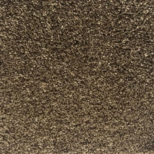In-Stock Carpet By Beaulieu Rudder