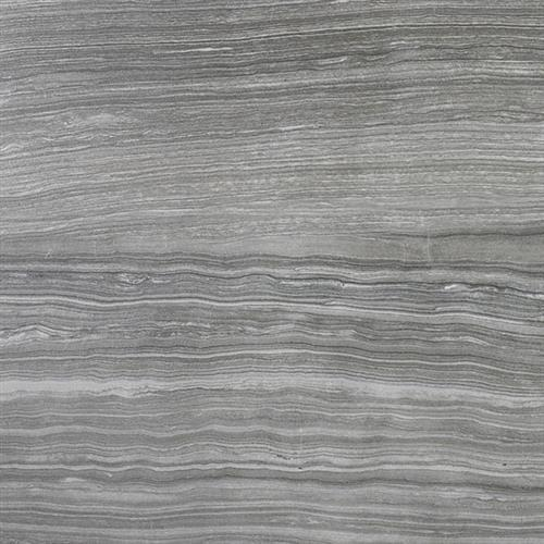 Algonquin Limestone Carbon   - 12X24