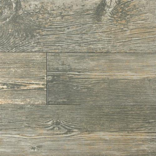 Forest Black   - 6X36