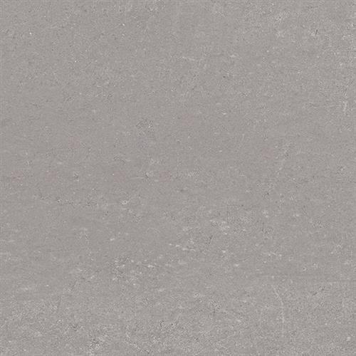 Polvere   - 12x24
