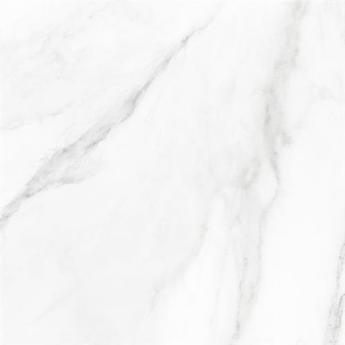 Marmo Statuario Polished  - 12X24