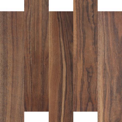 Prodigy  Plank Santa Cruz 5006