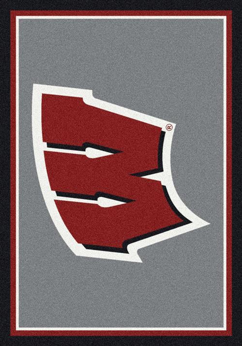 Wisconsin-College Team Spirit