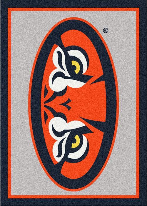 Auburn College Team Spirit Area Rugs