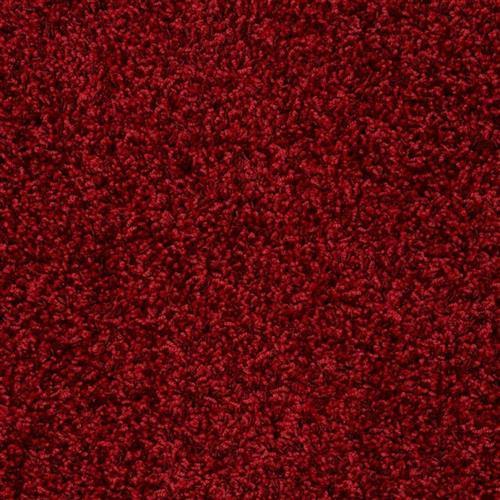 Showbiz Red Carpet 00808