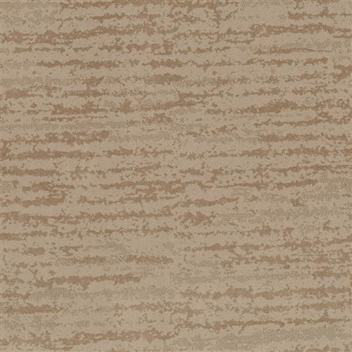 Room Scene of Enduring Truth - Carpet by Shaw Flooring