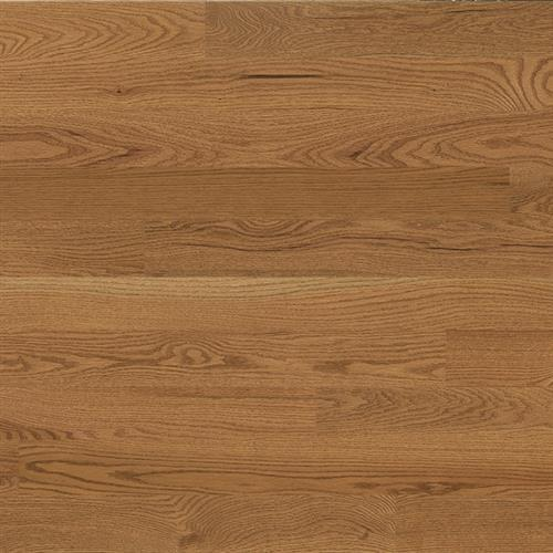 Essential Collection - Solid Creme Brulee - Red Oak 225