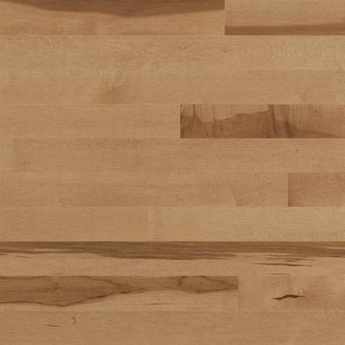 Essential Collection  Engineered Expert in Creme Brulee  Hard Maple Tradition 3.125 - Hardwood by Lauzon