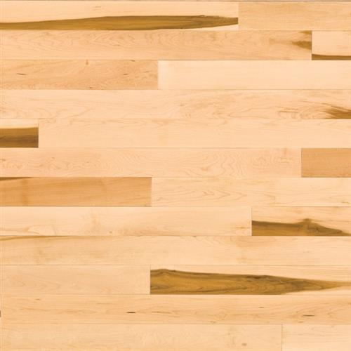 Essential Collection  Engineered Expert in Natural  Hard Maple Tradition 4.125 - Hardwood by Lauzon
