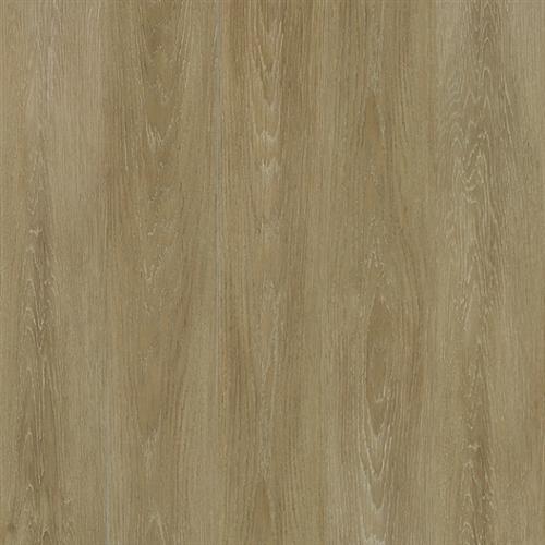 Elevations - Wood Look South Beach