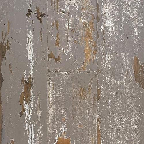 Lighthouse Cove Frosty Taupe Weathered