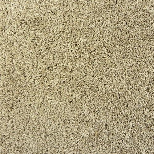 In Stock - Carpet Rolls Dw-Talk Of The Town-Sand Dollar