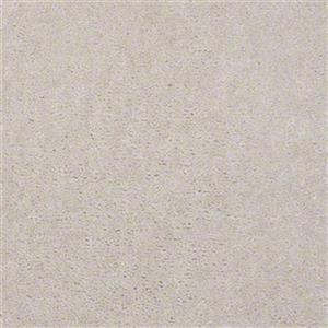 Carpet ASPENCLASSIC 4850 4850Oyster