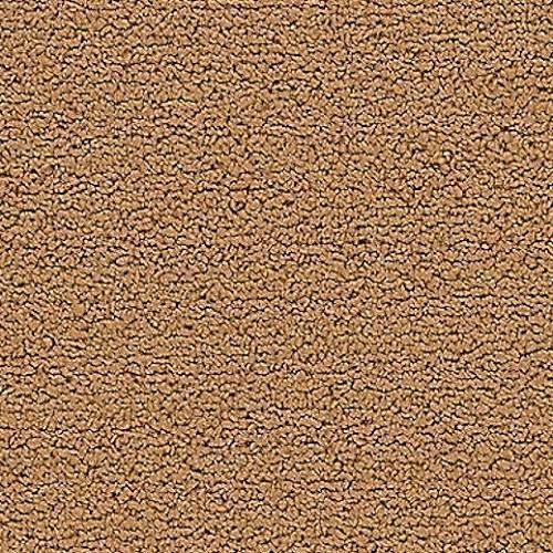CRAYONS 3650 Desert Sand