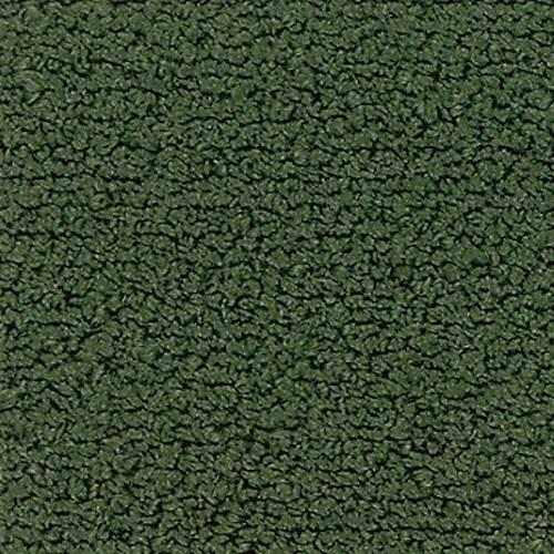 CRAYONS 3655 Winter Green