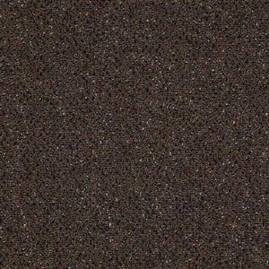 Carpet BIGLEAGUE 1195 1195TheRays