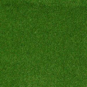 Carpet CLIMBING 1112 1112Mountain