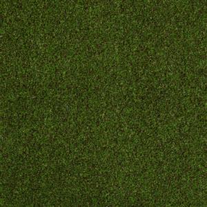 Carpet CLIMBING 1113 1113Cliff