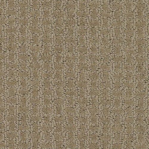 Carpet ACADEMY 2009 Enrollment  main image