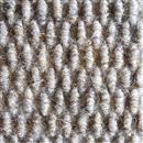 Carpet BEACHES 1091 Flagler  thumbnail #1