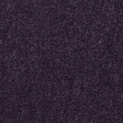 EAGLE TRACE II 30  36 6119 Merion
