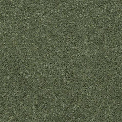 EAGLE TRACE II 30  36 6204 Springtime