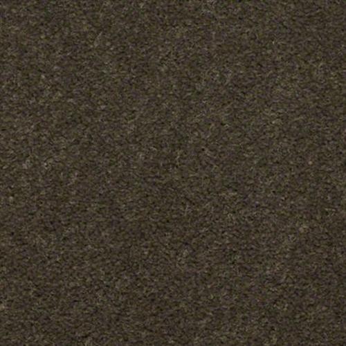 EAGLE TRACE II 30  36 6213 Beaver