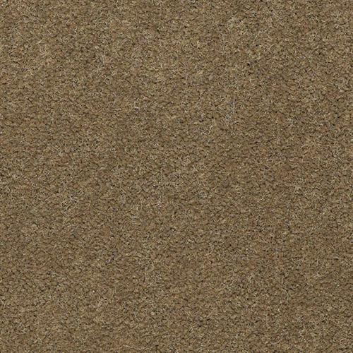 EAGLE TRACE II 30  36 6222 Bronze