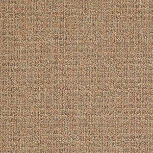 Carpet CAMPING SFICAMPING-1101 1101BakedBeans