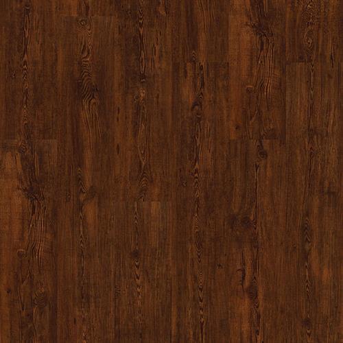 Truffle Pine