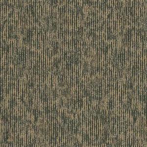 Carpet AudioEcho I0389 Bandwidth