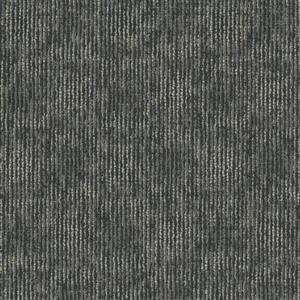 Carpet AudioEcho I0389 Amplitude