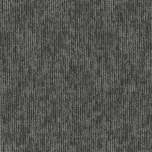Carpet AudioEcho I0389 Equalizer
