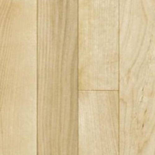 Classic Collection Premium Grade Yellow Birch