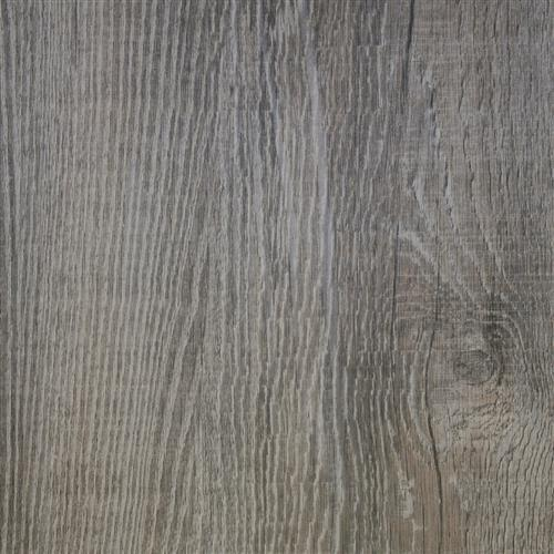 Echo Bay Timber Wolf