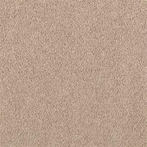 Excitement Tuscan Taupe 2093